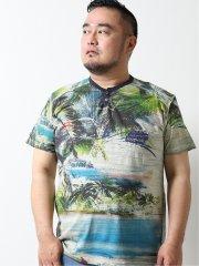 【大きいサイズ】デシグアル/Desigual マオカラー&ボタン トロピカル 半袖Tシャツ
