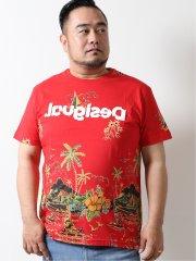 【大きいサイズ】デシグアル/Desigual レッドパームロゴ刺繍 半袖Tシャツ