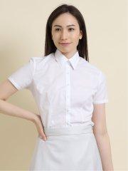 【白無地】形態安定レギュラーカラー ブロード半袖シャツ